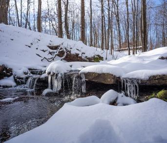 عکاسی از رنگها و سایه های نور زمستان