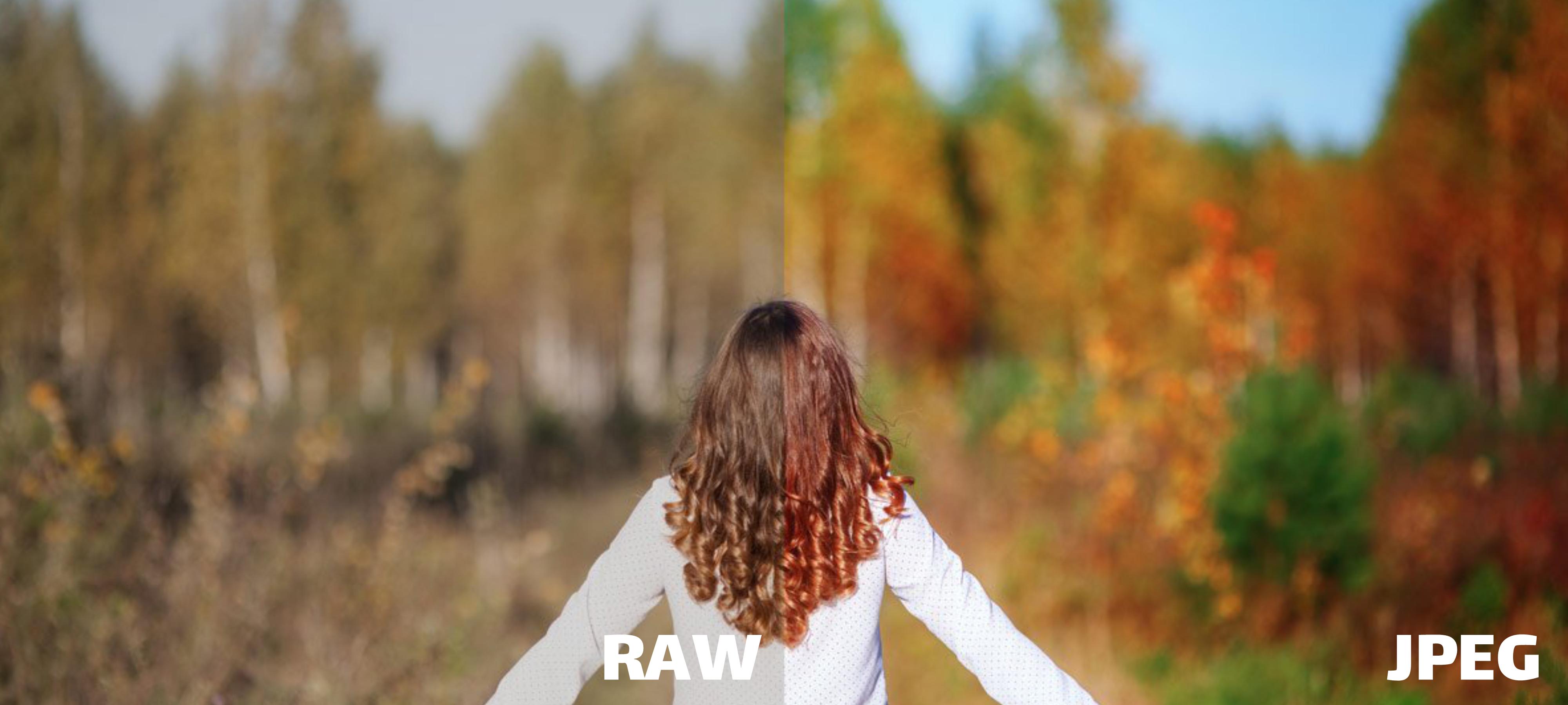 مقایسه بهترین فرمت عکسبرداری RAW vs JPG